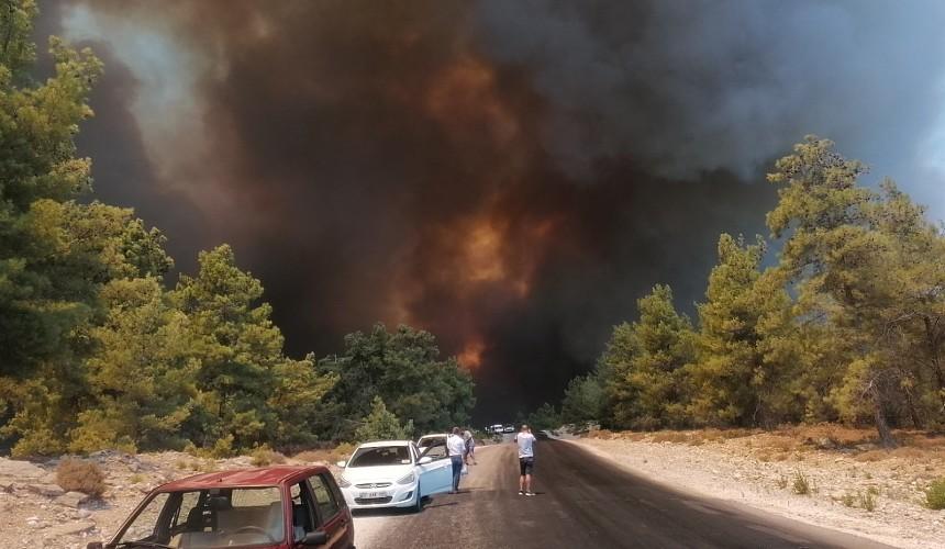 В Анталье бушуют лесные пожары